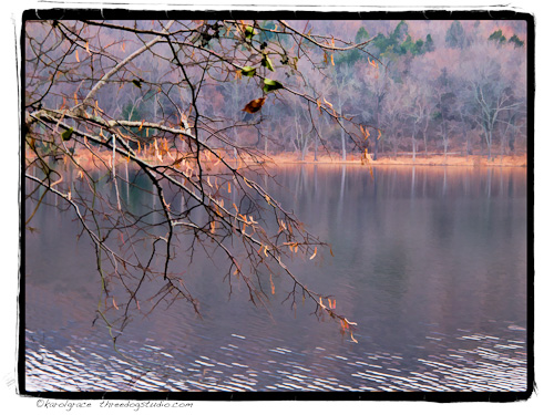 Radnor Lake, Nashviile