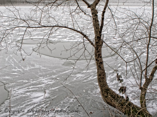 Lightdance 365, Feb. 6, 2014 - ICE-OLATED